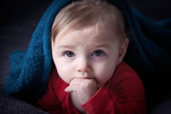 Cute curiose  baby Royalty Free Stock Images