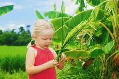 Cute curious baby exploring the rice bundle on green field Royalty Free Stock Images