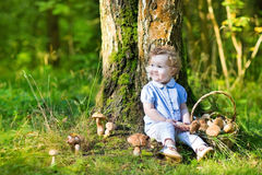 Cute curly baby girl gathering mushrooms in autumn forest Stock Photography