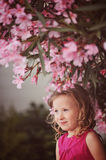 Cute curly blonde child girl in pink outfit sitting on the wall under blooming tree Stock Photos