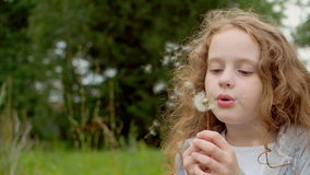 Cute curly girl blowing dandelion. Little curly girl blowing dandelion stock video