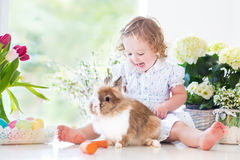 Cute curly toddler girl playing with a bunny Stock Photography