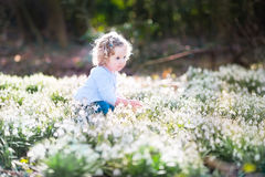 Cute curly toddler girl playing with first spring flowers Stock Photography
