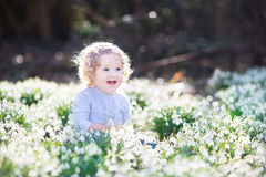 Cute curly toddler girl playing with first spring flowers Royalty Free Stock Photography