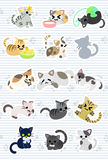 The cute cute cats Royalty Free Stock Photography