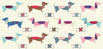 Cute dachshund repeat pattern with bones as bows. In a cartoon style Stock Photos