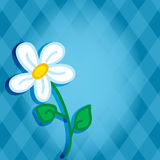 Cute daisy over diamond background Stock Photography
