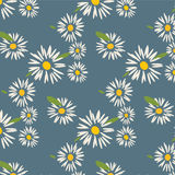 Cute Daisy Pattern. Vector EPS of Cute Daisy Pattern Stock Image