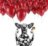 Cute dalmatian dog with balloon and lollipop Stock Photography