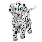 Cute Dalmatian Dog Royalty Free Stock Photos