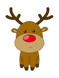 Cute deer Stock Photos