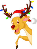 Cute deer cartoon with bulb and red hat Royalty Free Stock Photos