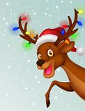Cute deer cartoon with bulb and red hat Royalty Free Stock Images