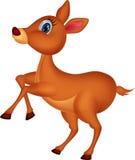 Cute deer cartoon Stock Photo