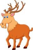 Cute deer cartoon Stock Images