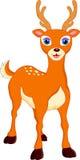 Cute deer cartoon Royalty Free Stock Image