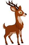 Cute deer cartoon Stock Image