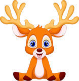Cute deer cartoon Royalty Free Stock Image