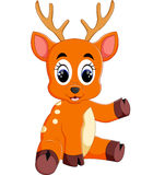Cute deer cartoon Stock Photos