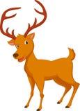Cute deer cartoon Stock Image