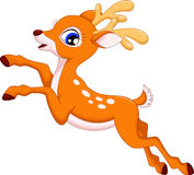 Cute deer cartoon Royalty Free Stock Photography