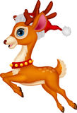 Cute deer cartoon with red hat Royalty Free Stock Images