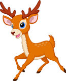 Cute deer cartoon running Stock Photography