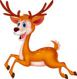 Cute deer cartoon running Royalty Free Stock Images