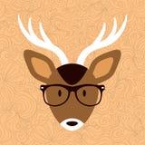 Cute deer in glasses Royalty Free Stock Photo