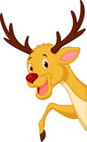 Cute deer head cartoon Stock Image