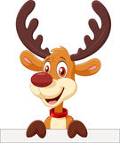 Cute deer holding blank sign Isolated on white background Stock Photos