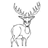 Cute Deer Reindeer Caribou Cartoon Character. Isolated On a White Background Doodle Cartoon Hand Drawn Sketch Vector. Isolated On a White Background Doodle Royalty Free Stock Image