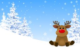 Cute deer in the winter forest stock image