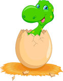 Cute dinosaur cartoon hatching Royalty Free Stock Images