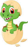 Cute dinosaur cartoon hatching Royalty Free Stock Photos