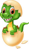 Cute dinosaur cartoon hatching Stock Image