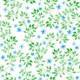 Cute ditsy flowers, herbs and grasses. Seamless pattern. Watercolor Royalty Free Stock Images