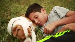 Cute dog and adorable kid laying down in grass.  Puppy is eating grass stock footage