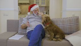 Cute dog asks some snack in senior man wearing Santa`s hat stock video footage