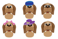 Cute dog avatars Stock Images
