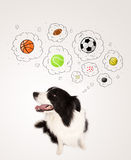 Cute dog with balls in thought bubbles Royalty Free Stock Photography