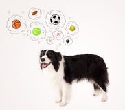 Cute dog with balls in thought bubbles Stock Photography
