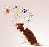 Cute dog with balls in thought bubbles Royalty Free Stock Image