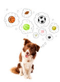 Cute dog with balls in thought bubbles Royalty Free Stock Photos