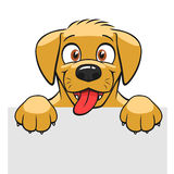 Cute dog banner Royalty Free Stock Photos
