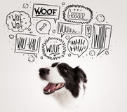 Cute dog with barking bubbles. Cute black and white border collie with barking speech bubbles above her head Stock Images
