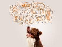Cute dog with barking bubbles Royalty Free Stock Photo