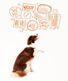 Cute dog with barking bubbles Stock Images