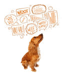 Cute dog with barking bubbles Royalty Free Stock Images