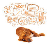 Cute dog with barking bubbles. Cute cocker spaniel with barking speech bubbles above her head Stock Photography